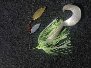 Sprinnerbait review