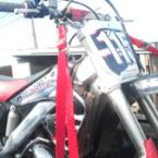 shock strap