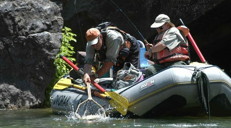 What Anglers Have Learned About Gold Medal Fishing in Colorado's Arkansas River