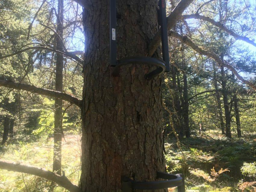 tree-stand