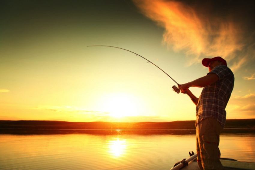 fishing in the summer