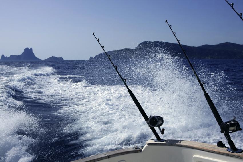 catch walleye