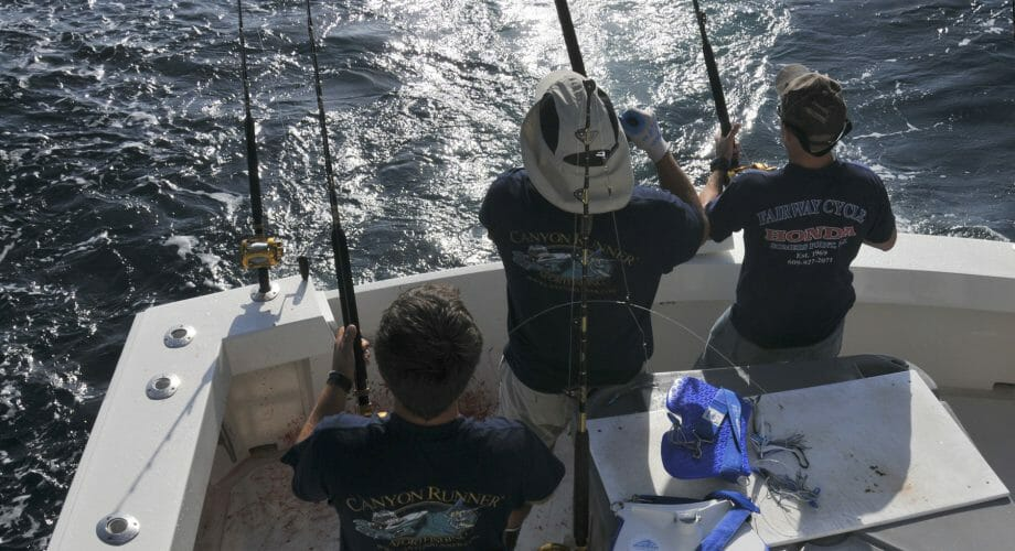 Boat Fishing Tips & Techniques