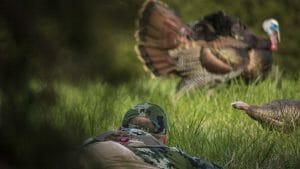 hunting basics sneaking