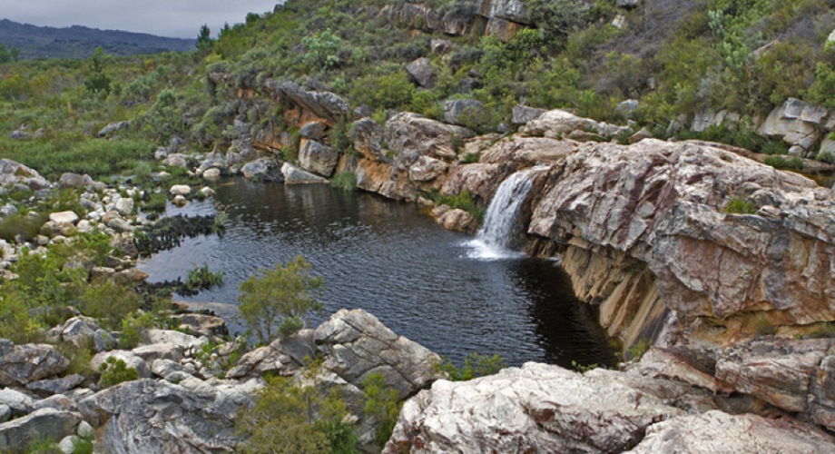 Landscapes, Wildlife, and Sunshine: The Best Camping Sites in South Africa