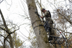 7 Tips to Make Your Treestand More Comfortable