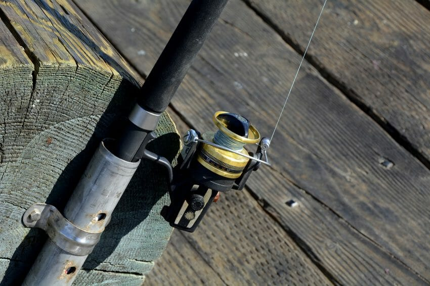 5 Important Facts to Know Before Choosing a Fishing Line best fishing line, fishing line Fishing