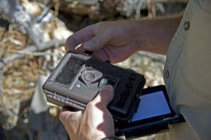 hunting skills trail camera