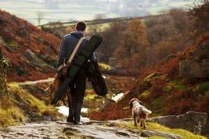 Animal, Bird, Catch, Dog, Field, Gear, Gun, Hunt
