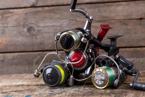 Fishing Reels 101: Your Guide to Choosing the Right Reel for Your Fishing Needs baitcaster, best fishing reel, spinning reel Fishing