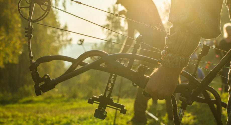Bow Vs Gun Hunting: What Are the Pros and Cons?