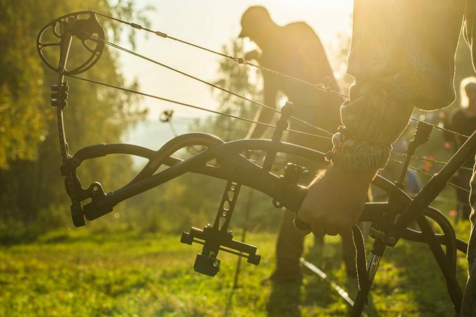 Bow Vs Gun Hunting: What Are the Pros and Cons? Bow Vs Gun Hunting Hunting
