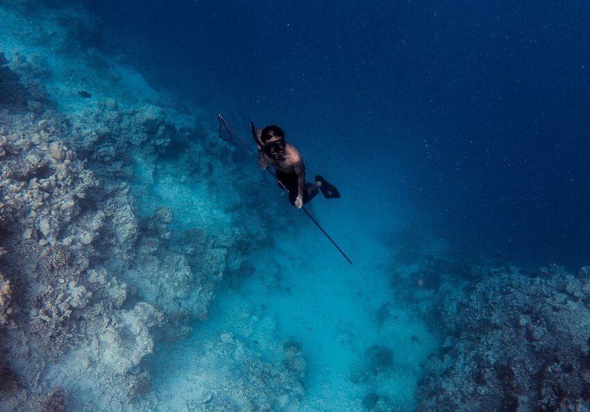 Shoot With Purpose: A Beginner's Guide to Choosing the Best Speargun spearfishing, spearguns Fishing