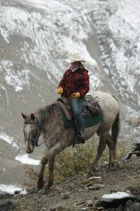 horseback hunting