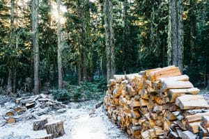 Carry Firewood Easily how to carry firewood Outdoors
