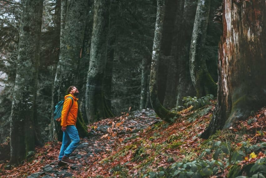6 Life Lessons to Learn When Going Out into the Wilderness Alone Outdoors