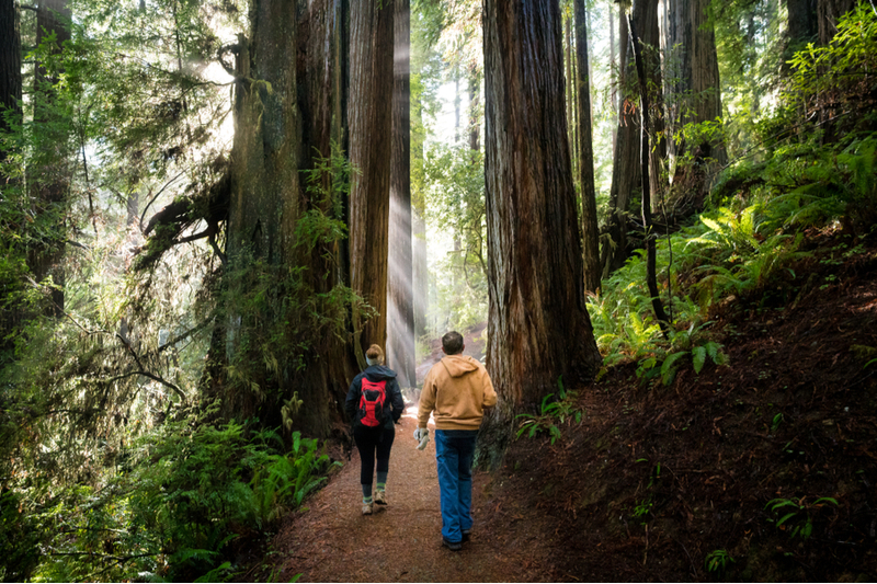 6 Family-Friendly Outdoor Activities to Do In Northern California  Outdoors