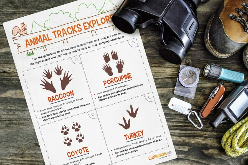 Camping Printables to Take On Your Next Family Camping Trip camping Outdoors News