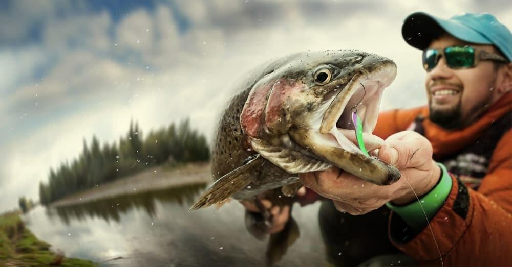 Best Bait for Pond Fishing best fishing bait, pandfish bait, pond baits Fishing