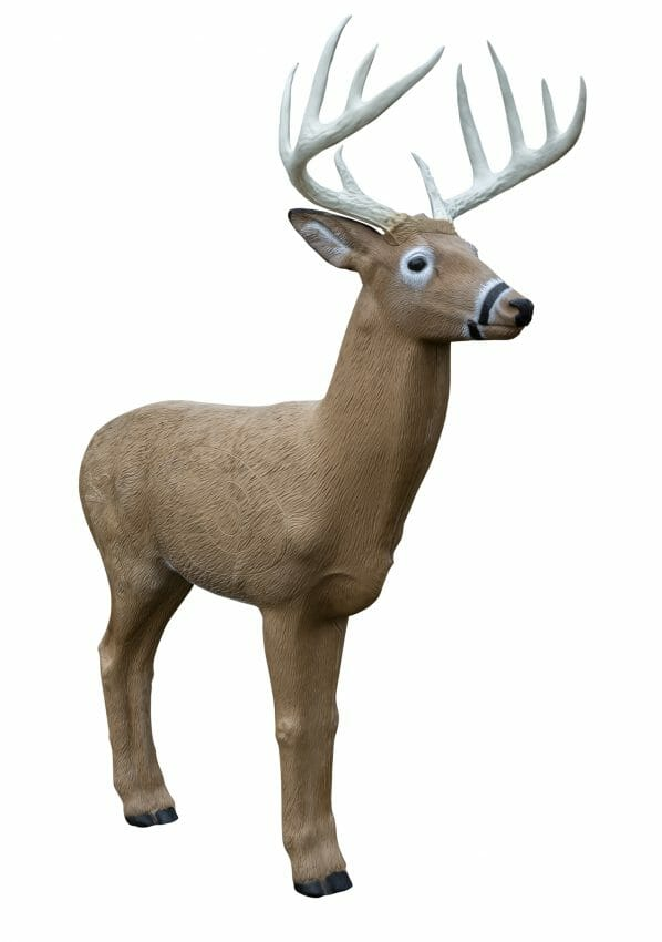 Get Your Shot at a Bruiser Midwest Buck 3D targets, bowhunting Archery News