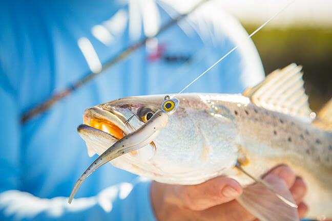 Essential Marine Research fishing, fishing lures Fishing & Boating News