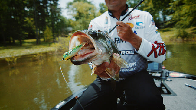LIVETARGET: Fantastic Frogs fishing, fishing lures Fishing & Boating News