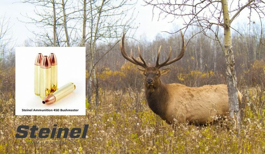The One-Shot-and-Drop Round, the 450 Bushmaster ammunition, Hunting Firearms News