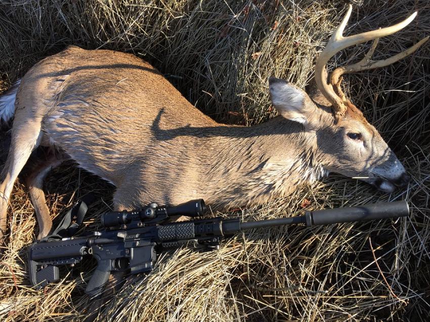 Field Dressing Your Deer