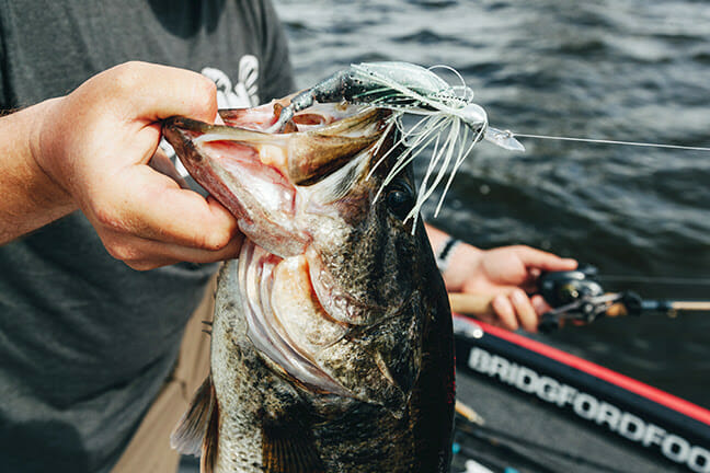 A Stealthier JackHammer fishing, fishing lures Fishing & Boating News