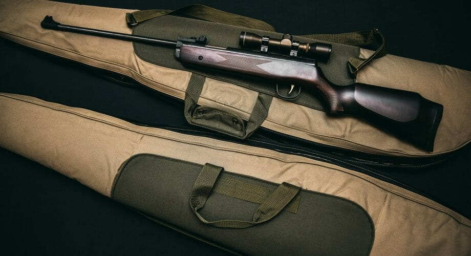 Great Tips for Air Rifle Beginners