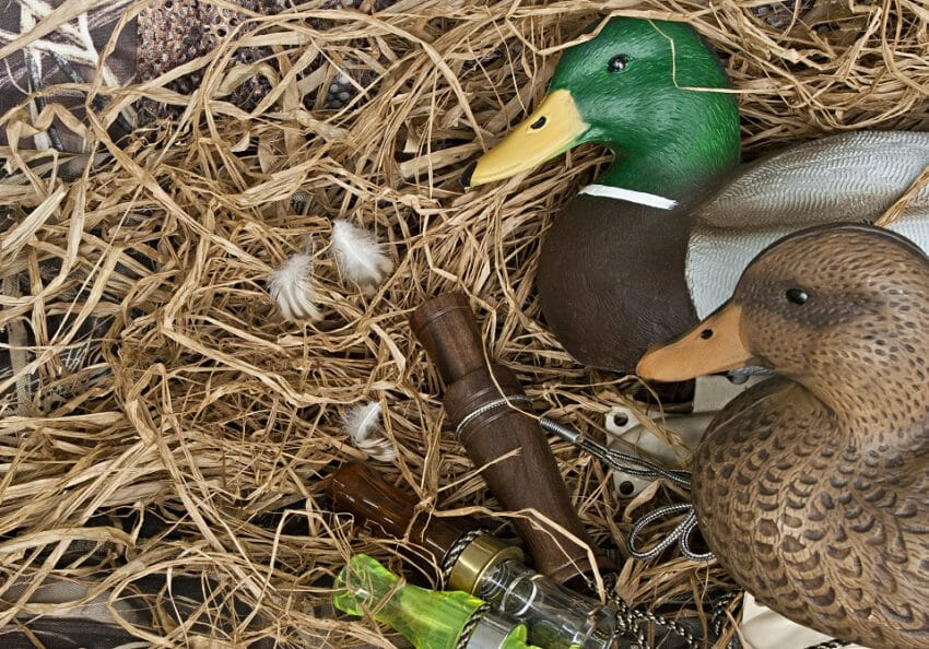 How to Choose Decoys for Duck Hunting Decoys for Duck Hunting Hunting