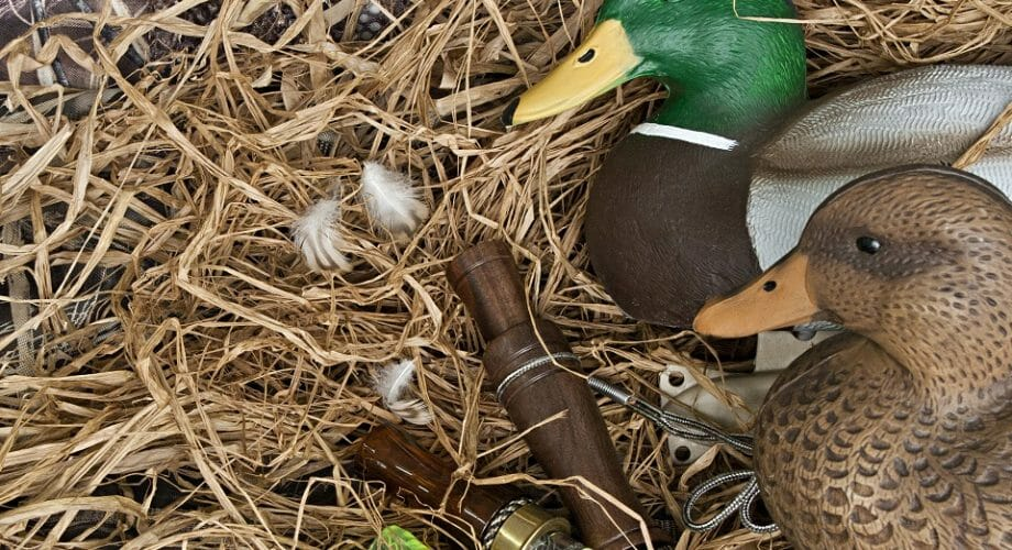 How to Choose Decoys for Duck Hunting