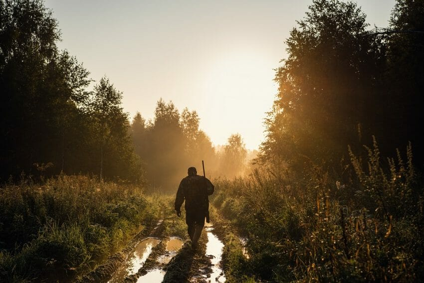 How to Get Started Hunting as an Adult Get Started Hunting Hunting