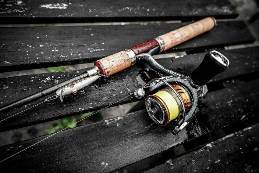 Which Fishing Reel Type Is Best For Beginners? fishing reels Fishing