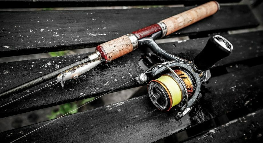 Which Fishing Reel Type Is Best For Beginners?