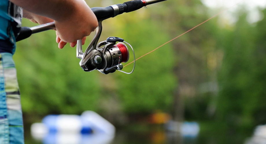The Most Challenging Kinds of Fish to Catch