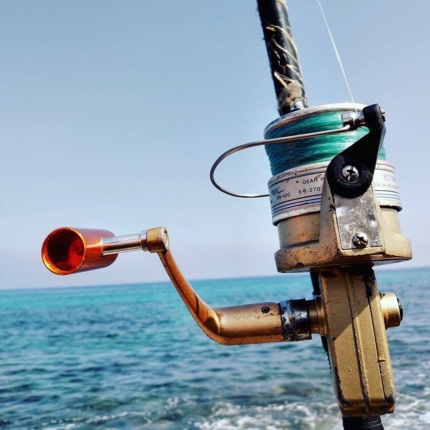 Can You Use WD-40 on Fishing Reels? Fishing