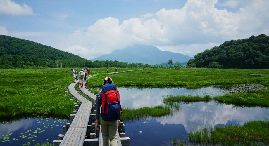 5 Preparedness Tips For Exploring Wetland Habitats