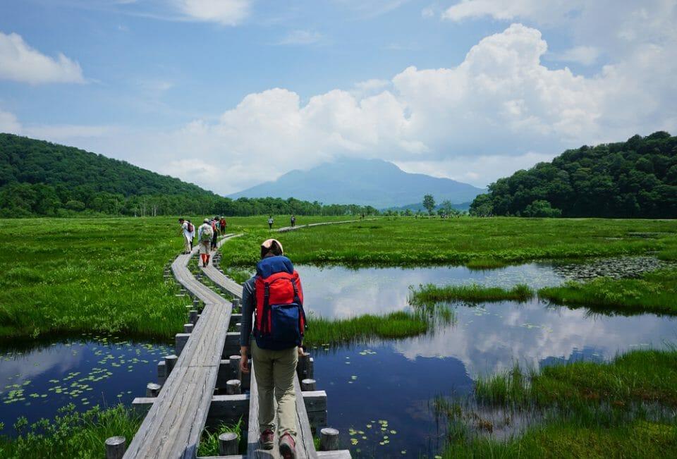 5 Preparedness Tips For Exploring Wetland Habitats Exploring Wetland Habitats Outdoors